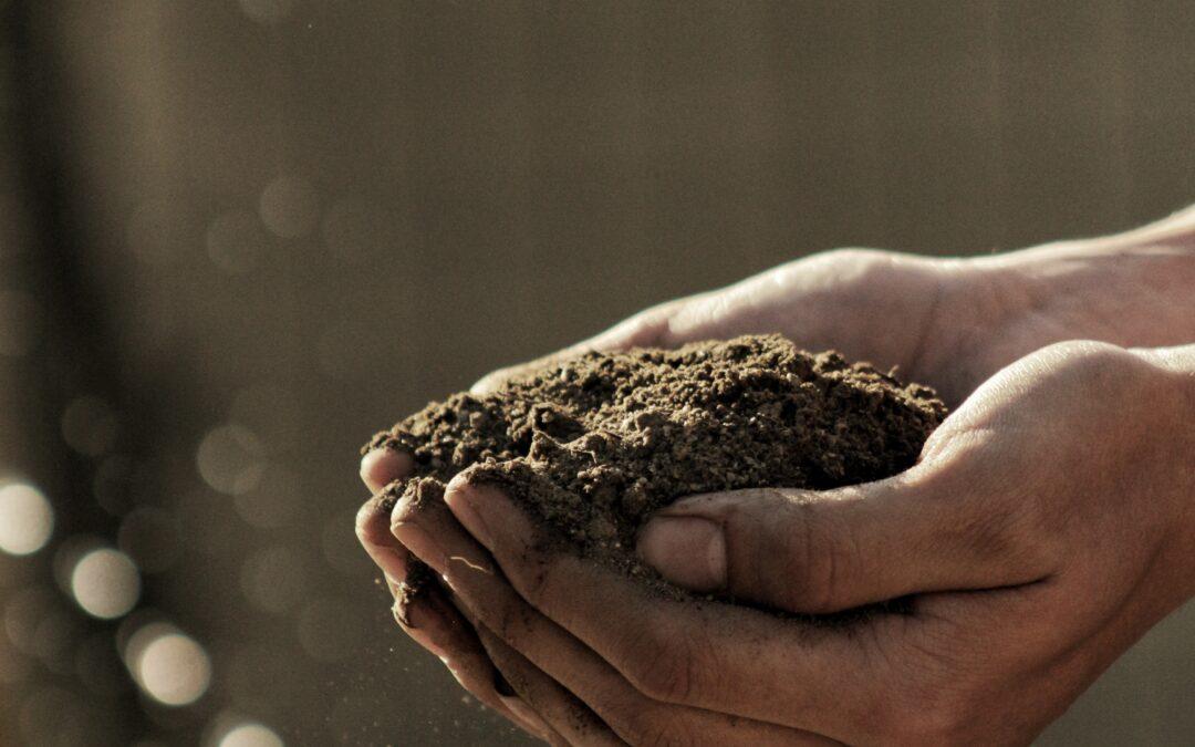 Compost Tea & Biochar