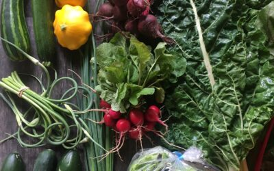 Grow Like a Market Gardener